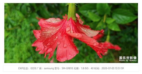 图片30.jpg