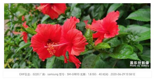 图片31.jpg